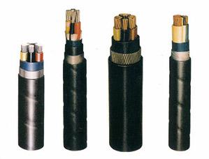 聚氧乙烯绝缘固定敷设用电缆